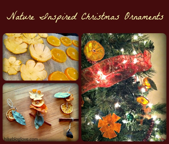 Nature Christmas Craft
